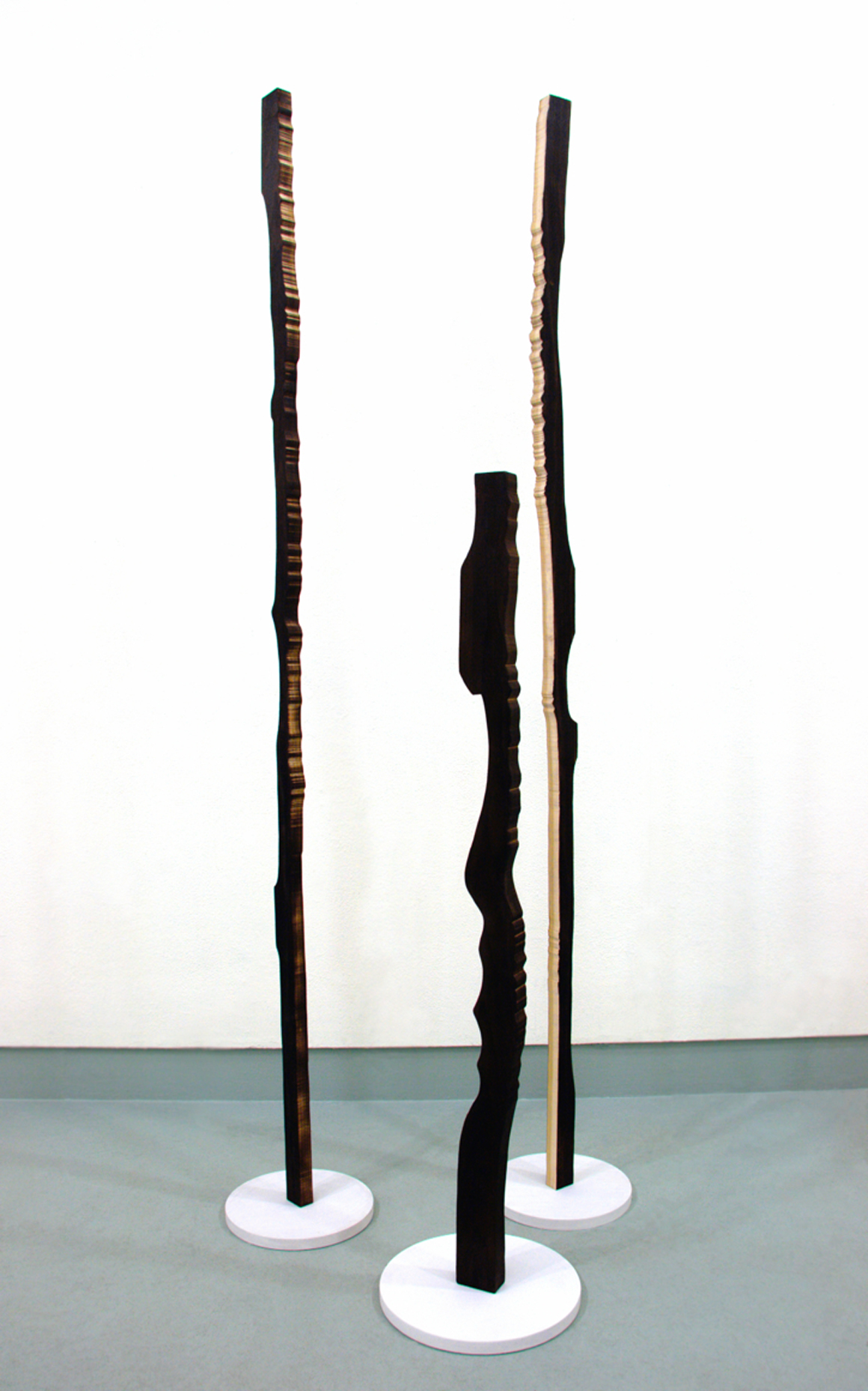 <p><em>Cross Section Totems</em><span class='media'>carbon (aspen wood and soot).</span>Size Variable<br>2014<br><a class='inquire' href='mailto:info@gildargallery.com?subject=Artwork Inquiry GBOO0001&body=I am interested in finding out more about Cross Section Totems by Geoff Booras'>Inquire</a></p>