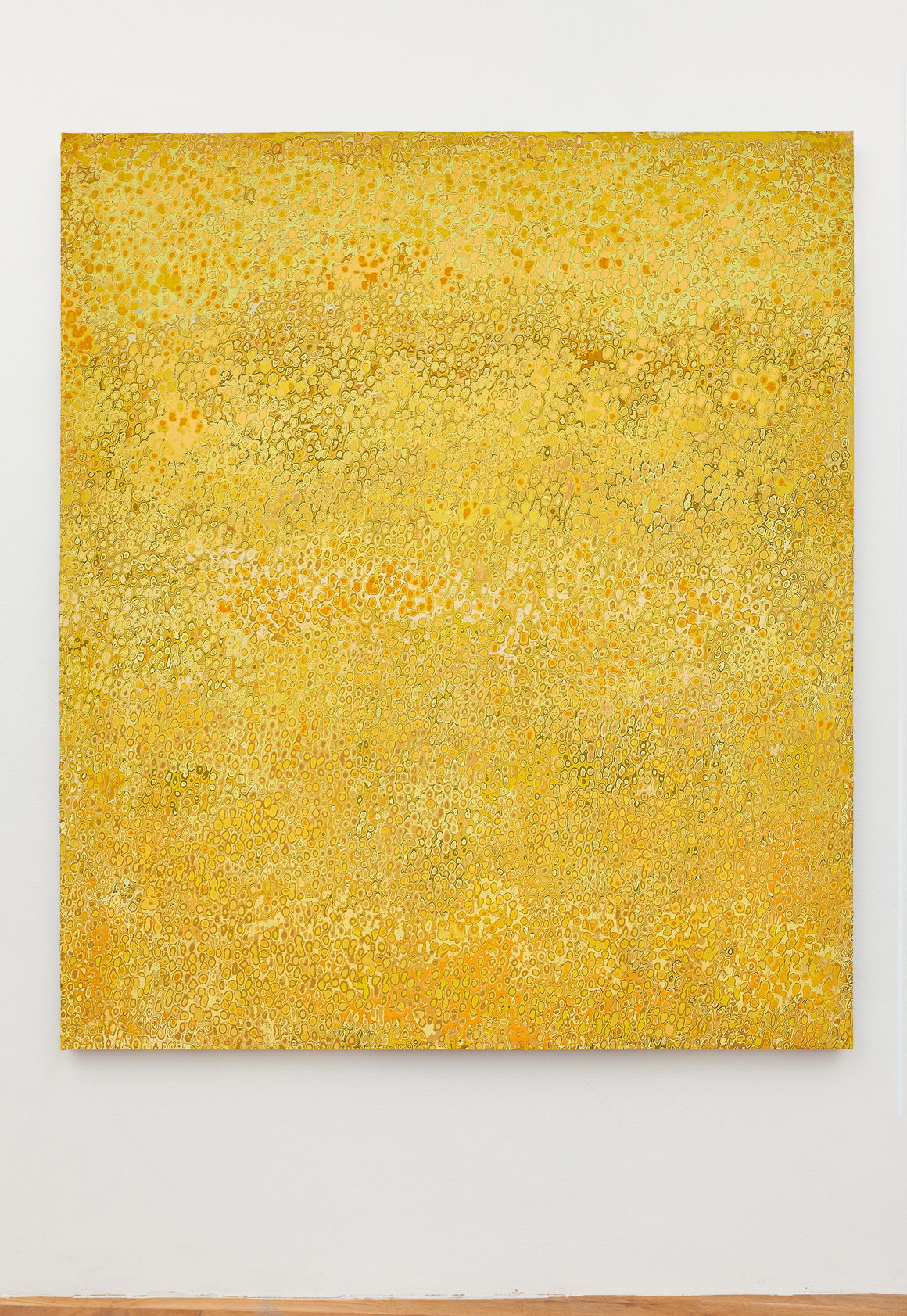 """<p><span class=""""name"""">Andrew Jensdotter</span><br><em>Yellow 70</em><span class='media'>Carved latex on canvas</span>80 x 68 in (203.2 x 172.7 cm)<br>2018<br><a class='inquire' href='mailto:info@gildargallery.com?subject=Artwork Inquiry AJEN0049&body=I am interested in finding out more about Yellow 70 by Andrew Jensdotter'>Inquire</a></p>"""